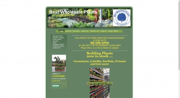 Best Wholesale Plants