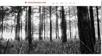 Demuth Photography