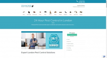Pest Control Muswell Hill