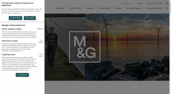 M G INVESTMENTS LTD, London