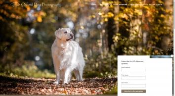 Oxford Dog Photography