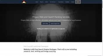 Pinguis Web Design & Search Experts Kerry Cork Websites in Ireland