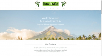 Raw & Wild Activated Organic Pili Nuts | Order Online | United Kingdom