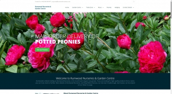 Kent\'s Largest Rose Grower, Rumwood Nurseries and Garden Centre