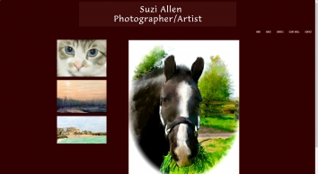 Suzi Allen Master Photographer