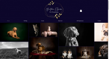 Portrait Photographer | Shrewsbury | Victoria Elsmore Photography